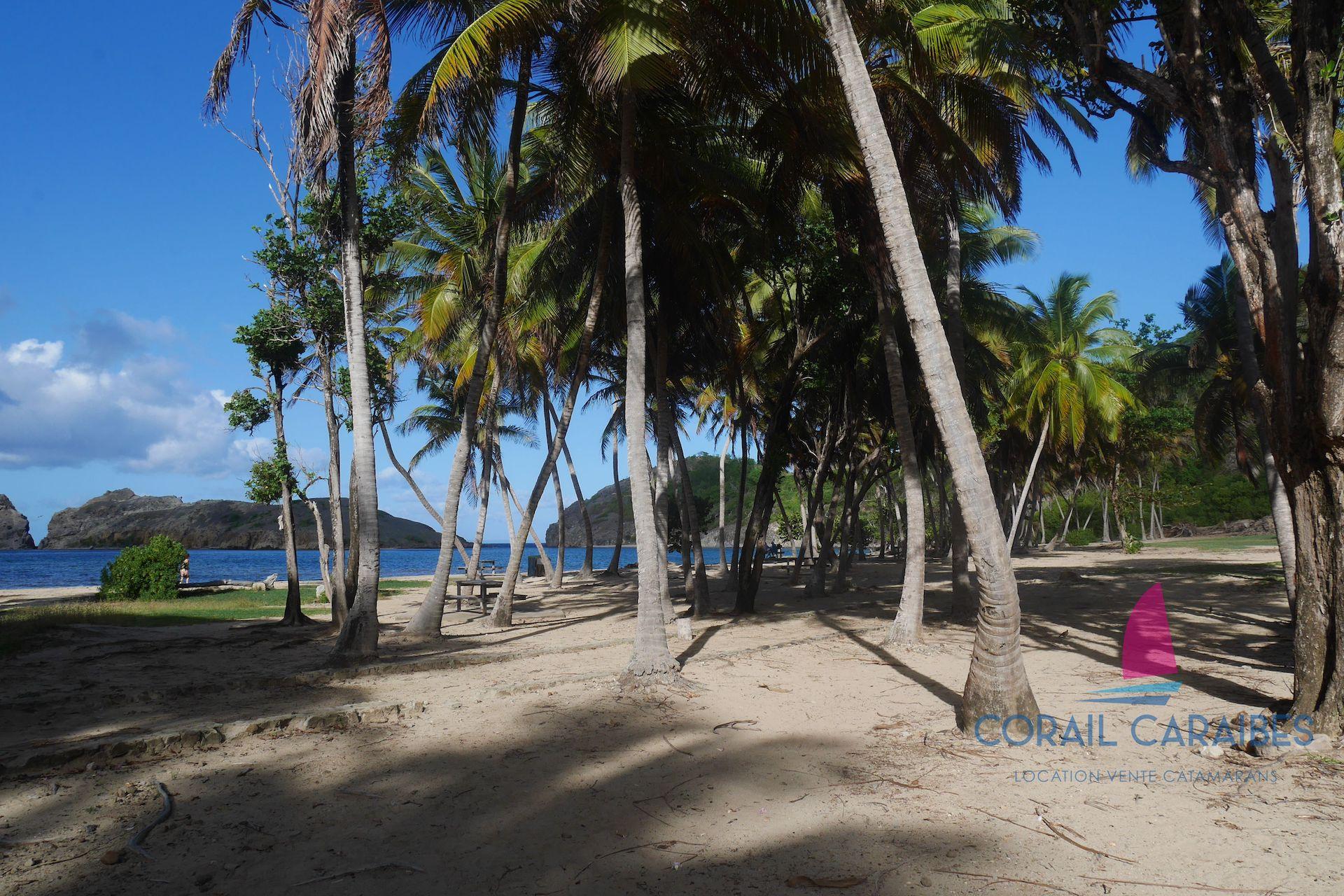 De-Martinique-en-Guadeloupe-J8